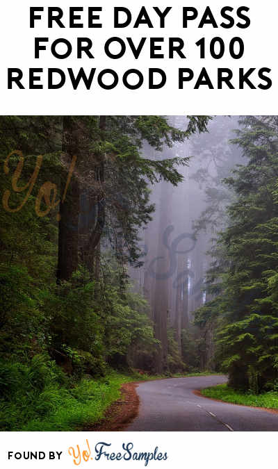 FREE Day Pass For Over 100 Redwood Parks