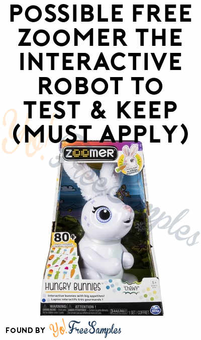 Possible FREE Zoomer The Interactive Robot To Test & Keep (Must Apply)