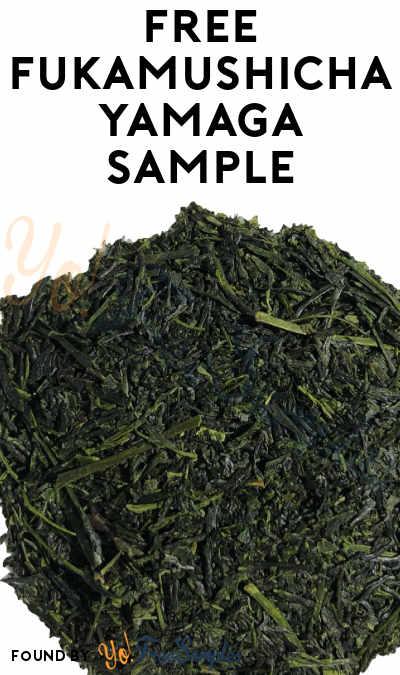 FREE Fukamushicha Yamaga Tea Sample