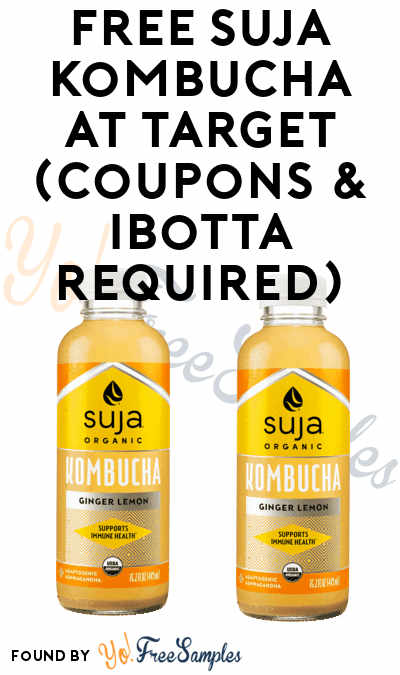 FREE Suja Kombuchas At Target (Coupons & Ibotta Required)