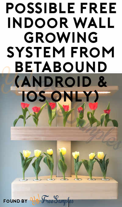 Possible FREE Indoor Wall Growing System From Betabound (Android & iOS Only)