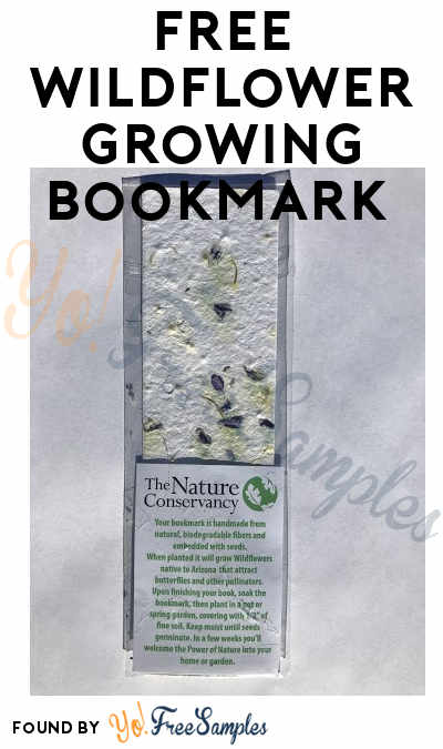 FREE Wildflower Growing Bookmark