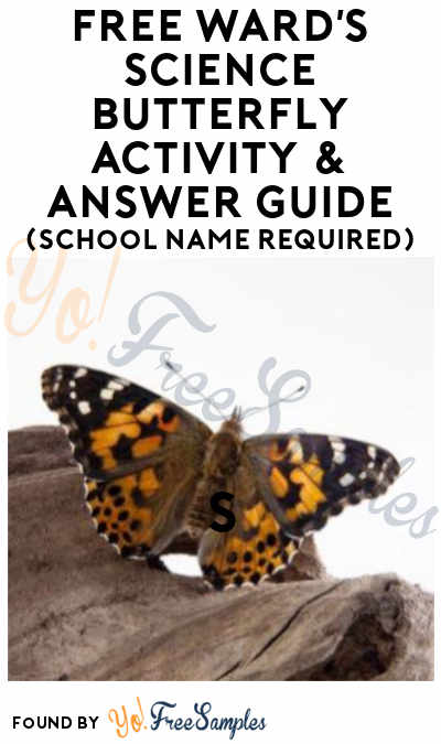 FREE Ward's Science Butterfly Activity & Answer Guide (School Name Required)