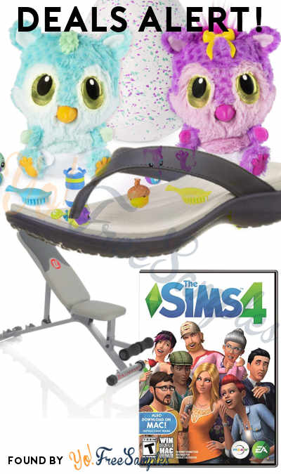DEALS ALERT: Hatchimals HatchiBabies, Women's Crocs Sandals, Workout Bench, Sims 4 & More