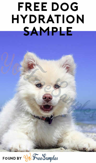 FREE Gel Hydration Dog Product Sample