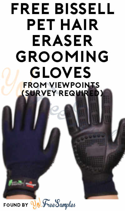 FREE Bissell Pet Hair Eraser Grooming Gloves From ViewPoints (Survey Required)