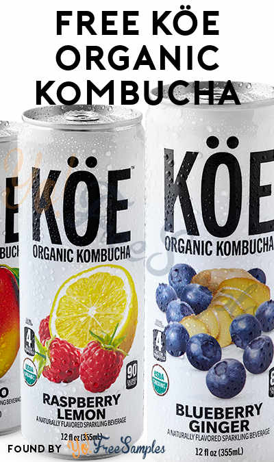 FREE KÖE Organic Kombucha