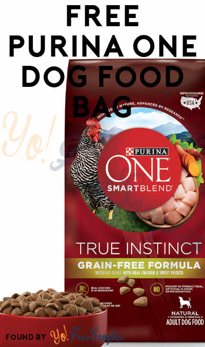 FREE Purina ONE Dog Food Bag [Verified Received By Mail]