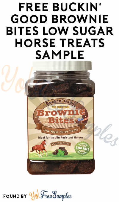 FREE Buckin' Good Brownie Bites Low Sugar Horse Treats Sample