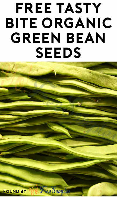 FREE Tasty Bite Organic Green Bean Seeds (1,000 Given Out Daily) [Verified Received By Mail]