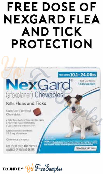 FREE Dose of NexGard Flea and Tick Protection (Veterinarian Visit Required)