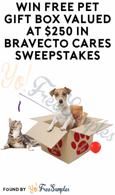 image regarding Bravecto Printable Coupons named Gain Totally free Puppy Reward Box Valued at $250 within Bravecto Cares