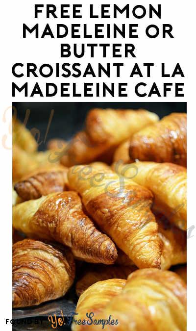FREE Lemon Madeleine or Butter Croissant At La Madeleine Cafe