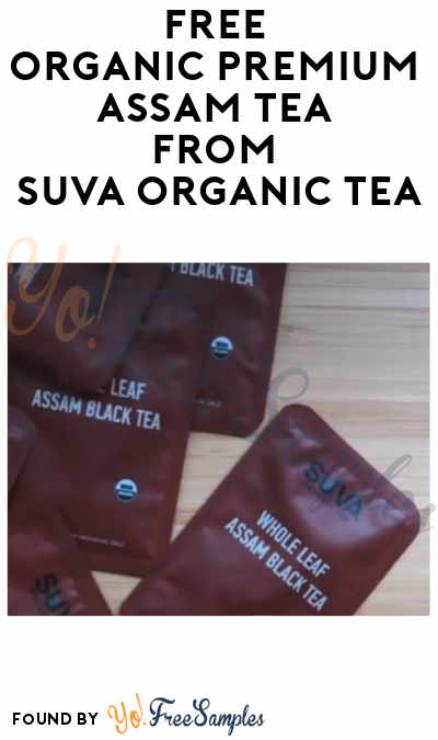 FREE Organic Premium Assam Tea from Suva Organic Tea (Instagram Required)