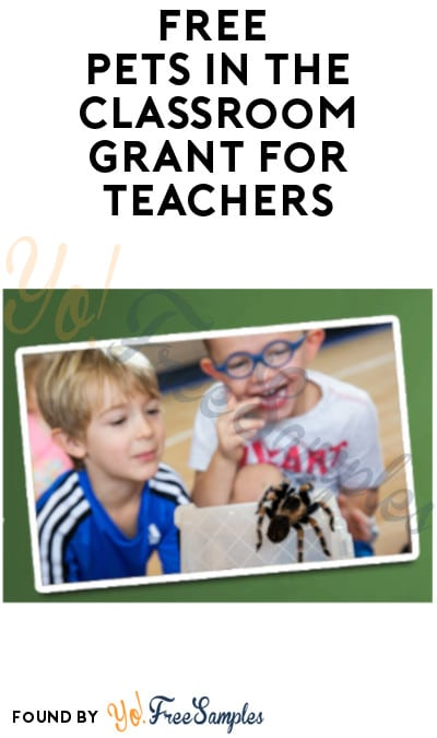 FREE Pets in The Classroom Grant for Teachers (Must Apply from 8/1)