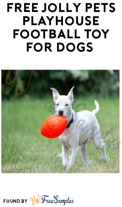 FREE Jolly Pets Playhouse Football Toy for Dogs (Select Accounts)