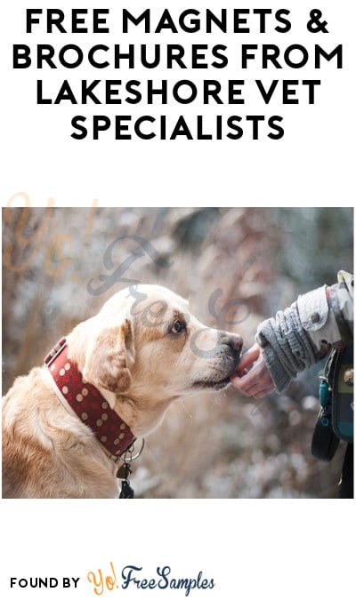FREE Magnets & Brochures from Lakeshore Vet Specialists