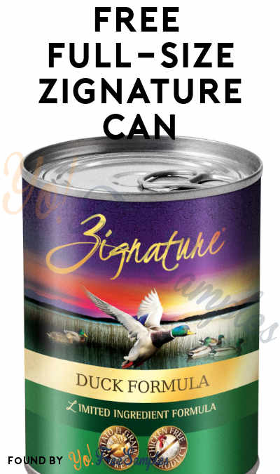 3 FREE Zignature Dog Food Cans