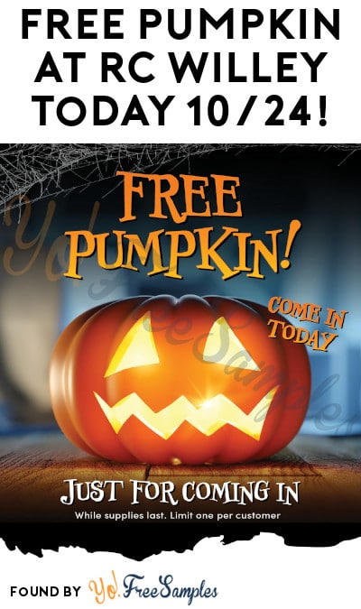 FREE Pumpkin at RC Willey Today Only, 10/24!