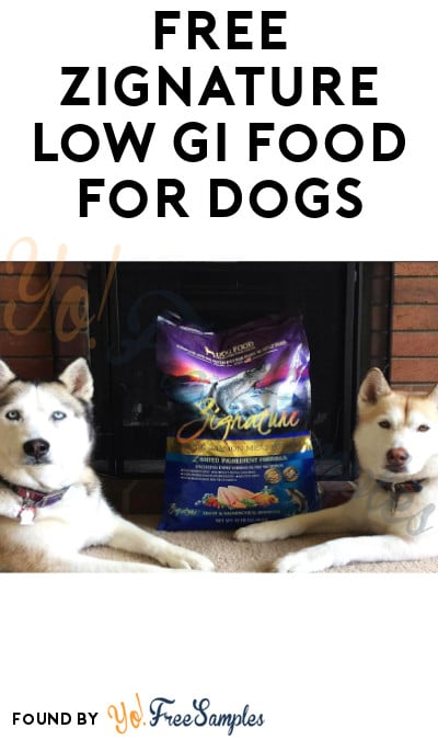 FREE Zignature Dog Food Sample [Verified Received By Mail]