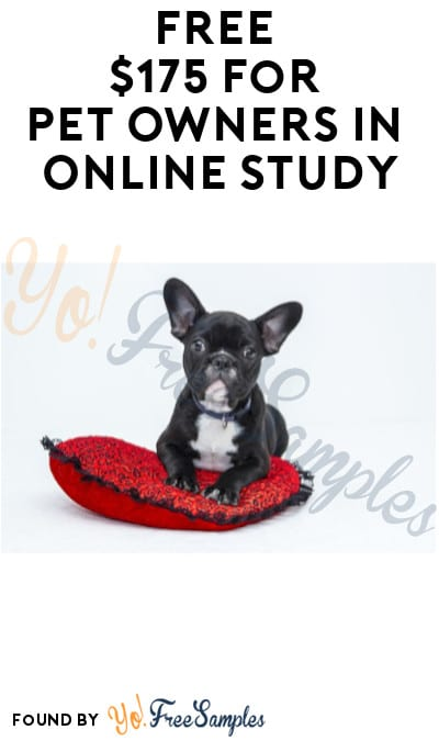 FREE $175 for Pet Owners in Online Study (Must Apply)