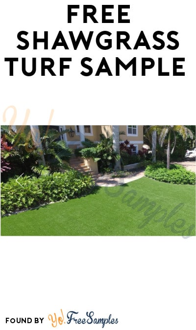 FREE Shawgrass Turf Sample