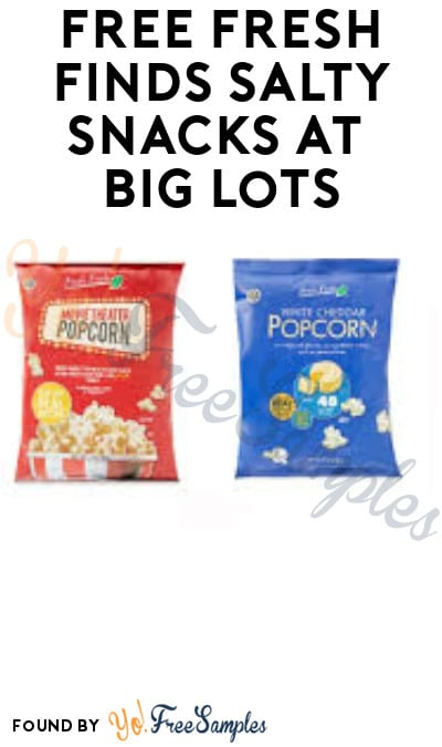 FREE Fresh Finds Salty Snacks at Big Lots (Rewards Card Required)