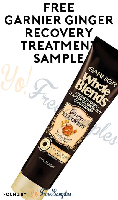 FREE Garnier Ginger Recovery Leave-In Treatment Sample