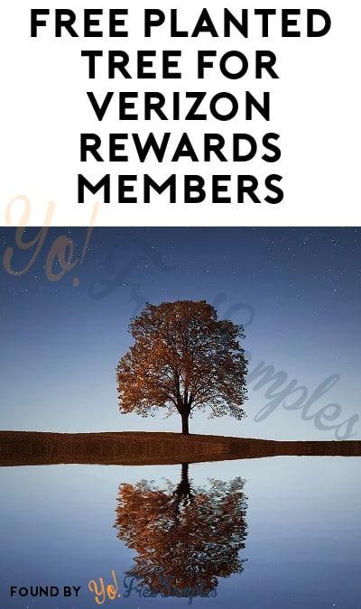 FREE Planted Tree For Verizon Rewards Members