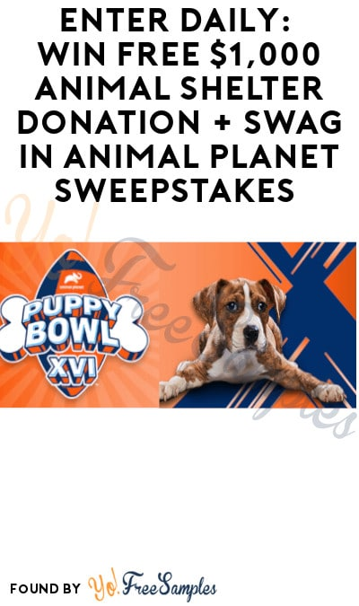 Enter Daily: Win FREE $1,000 Animal Shelter Donation + Swag in Animal Planet Sweepstakes (Ages 21 & Older)