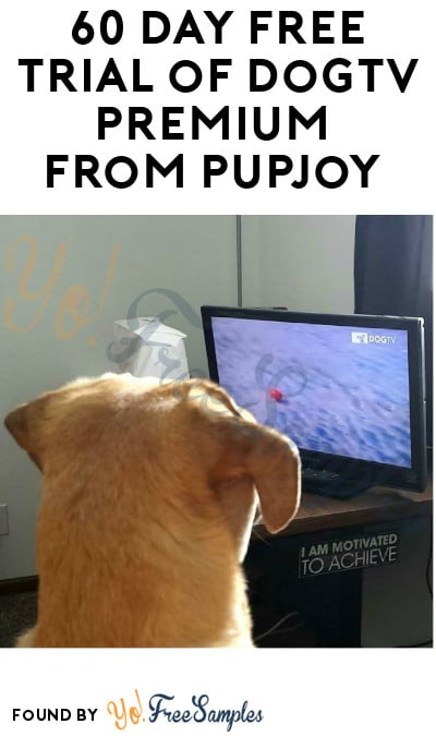 60 Day FREE Trial of DogTV Premium from Pupjoy (No Payment Information Required)