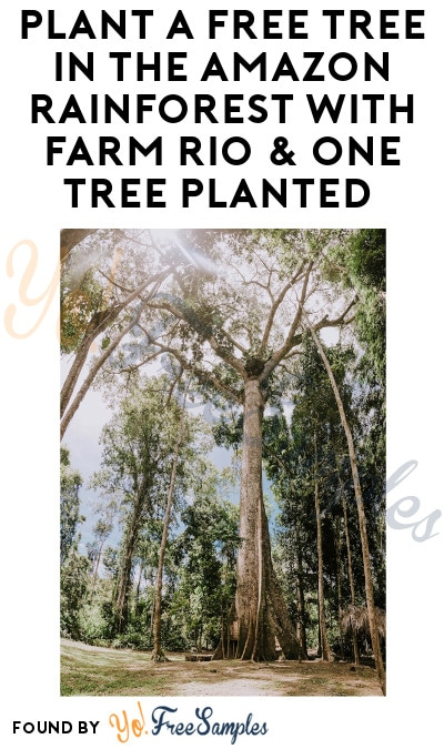 Plant a FREE Tree in The Amazon Rainforest with Farm Rio & One Tree Planted (Signup Required)