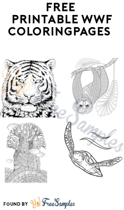 FREE Printable WWF Coloring Pages