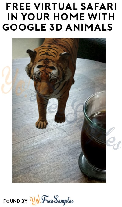 FREE Virtual Safari in Your Home with Google 3D Animals