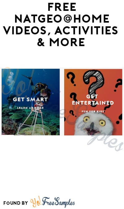 FREE NatGeo@Home Videos, Activities & More