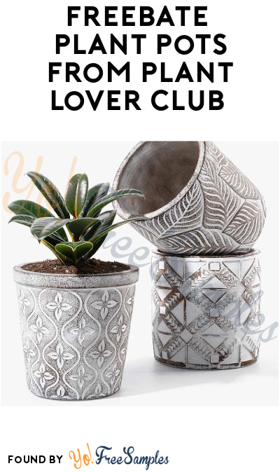 FREEBATE Plant Pots from Plant Lover Club