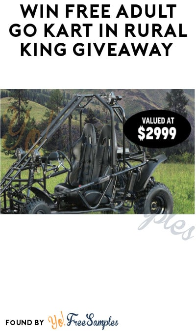 Win FREE Adult Go Kart in Rural King Giveaway (Ages 21 & Older Only)