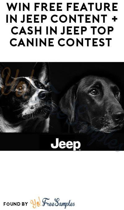 Win FREE Feature in Jeep Content + Cash in Jeep Top Canine Contest