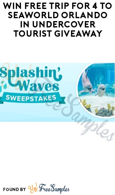Win FREE Trip for 4 to SeaWorld Orlando in Undercover Tourist Giveaway