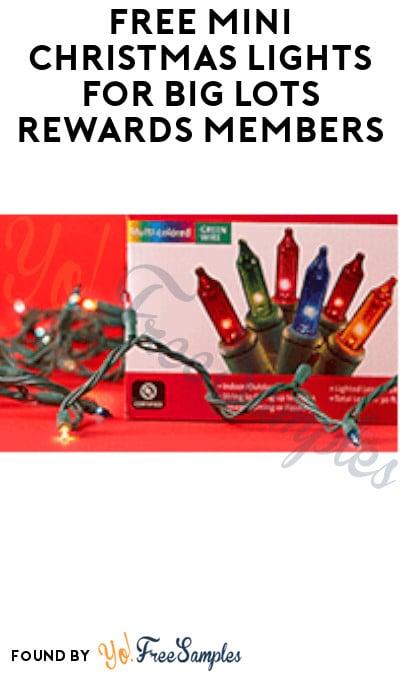 FREE Mini Christmas Lights for Big Lots Rewards Members