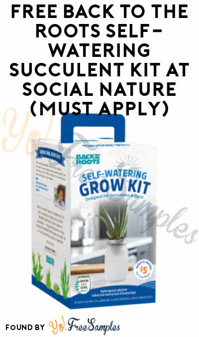 FREE Back to the Roots Self-Watering Succulent Kit At Social Nature (Must Apply)