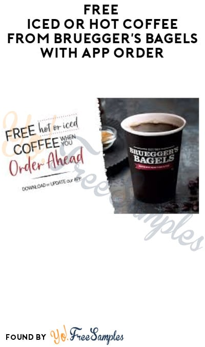FREE Iced or Hot Coffee from Bruegger's Bagels with App Order (Select Rewards Member Only)