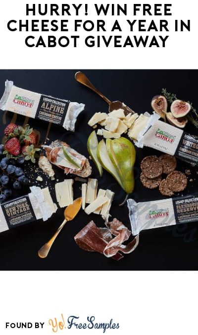 Win FREE Cheese For A Year in Cabot Giveaway