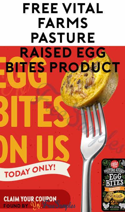FREE Vital Farms Pasture-Raised Egg Bites Product