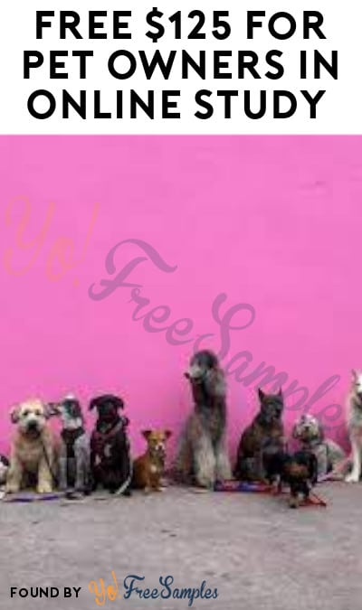 FREE $125 for Pet Owners in Online Study (Must Apply)