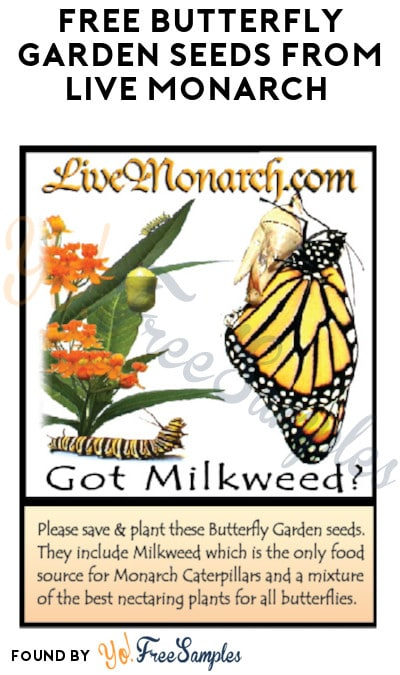 FREE Butterfly Garden Seeds from Live Monarch (Mail-In Request)