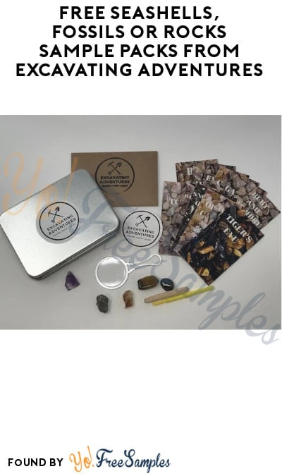 FREE Seashells, Fossils or Rocks Sample Packs from Excavating Adventures (Schools Only)