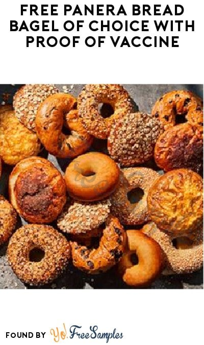 FREE Panera Bread Bagel of Choice with Proof of Vaccine (In-Café Only)