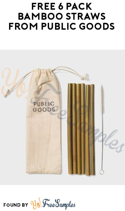 FREE 6 Pack Bamboo Straws from Public Goods + FREE Shipping (Credit Card Required)