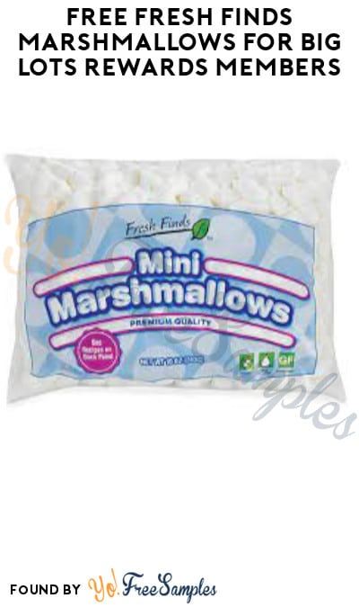 FREE Fresh Finds Marshmallows for Big Lots Rewards Members